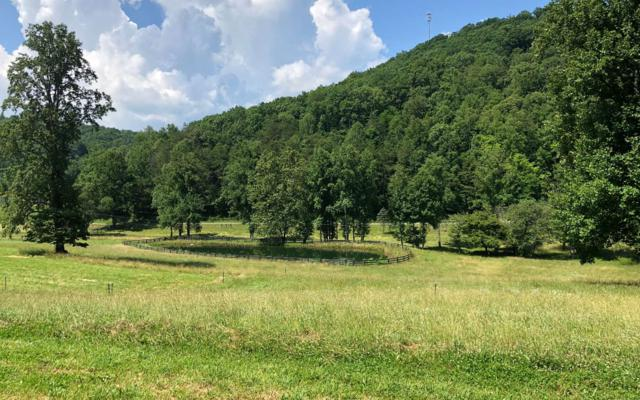 9ACRE Wolfstake Road, Blairsville, GA 30512 (MLS #279181) :: RE/MAX Town & Country