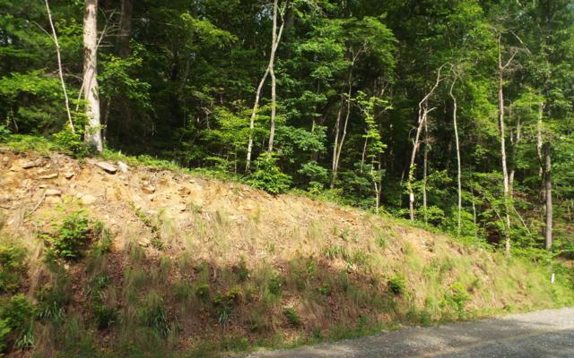 LT 10 Toccoa Riverbend, Blue Ridge, GA 30513 (MLS #279195) :: RE/MAX Town & Country