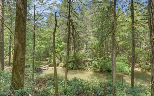 LOT 6 Power Dam Road, Blue Ridge, GA 30513 (MLS #279251) :: RE/MAX Town & Country