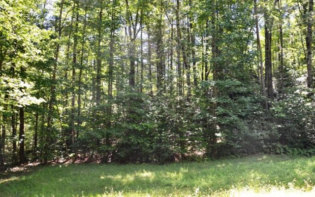 10 Chestnut Hills, Blue Ridge, GA 30513 (MLS #279265) :: RE/MAX Town & Country