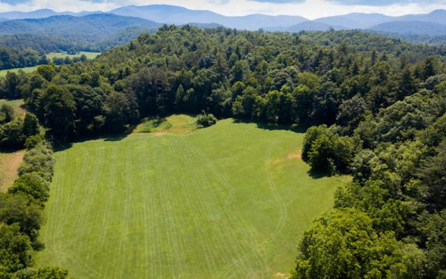 189 Collins Road, Blairsville, GA 30512 (MLS #279266) :: RE/MAX Town & Country