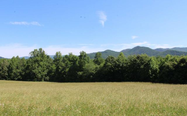 Penland Trail, Hayesville, NC 28904 (MLS #279297) :: RE/MAX Town & Country