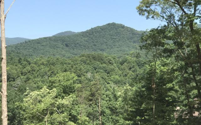 LT 49 Homestead Mountain, Ellijay, GA 30540 (MLS #279320) :: RE/MAX Town & Country