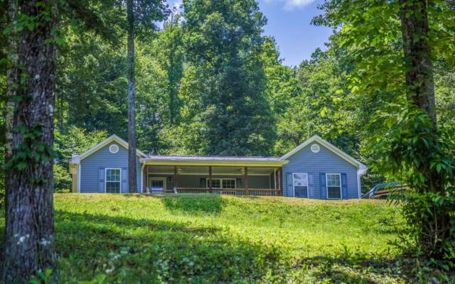 375 Rough Gravel Road, Murphy, NC 28906 (MLS #279377) :: RE/MAX Town & Country