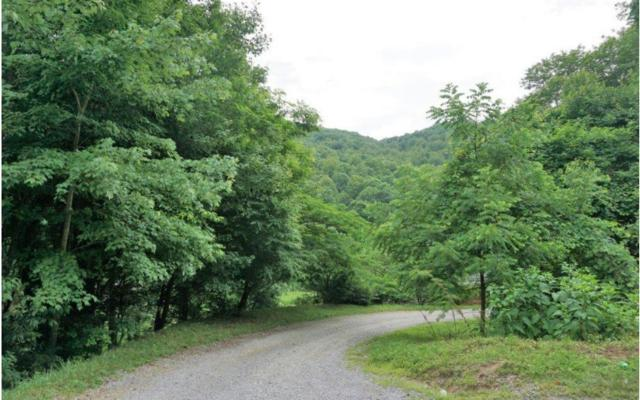 New Stansbury Rd, Turtletown, TN 37391 (MLS #279381) :: RE/MAX Town & Country