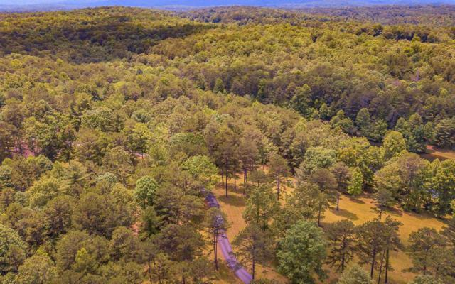Grant's Summit, McCaysville, GA 30555 (MLS #279417) :: RE/MAX Town & Country