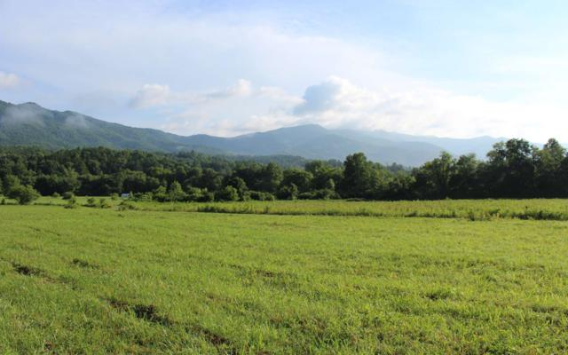 Pauls Meadows Dr, Hayesville, NC 28904 (MLS #279439) :: RE/MAX Town & Country