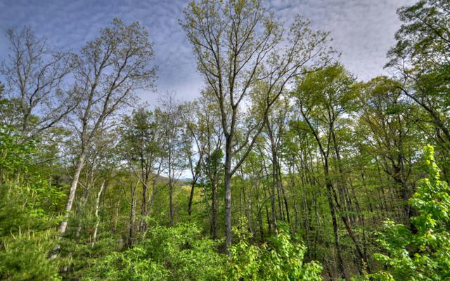 LOT 4 Elgin Mountain, Morganton, GA 30560 (MLS #279552) :: RE/MAX Town & Country
