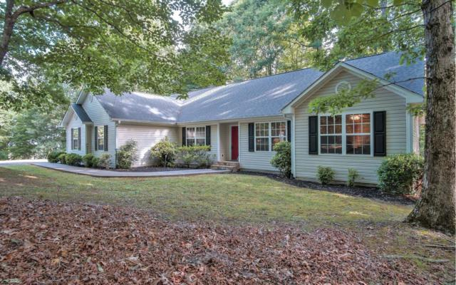 864 Locust Trl, Hiawassee, GA 30546 (MLS #279561) :: RE/MAX Town & Country