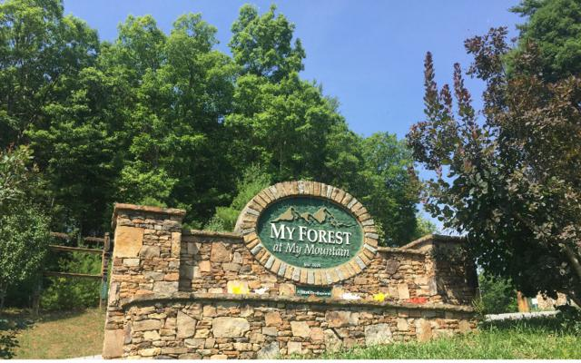 My Forest Tr, Morganton, GA 30560 (MLS #279601) :: RE/MAX Town & Country