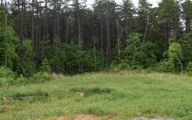 Stansbury Mtn Rd, Ducktown, TN 37326 (MLS #279613) :: RE/MAX Town & Country