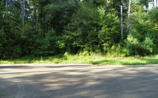 LT 40 Old South Farms, Ellijay, GA 30540 (MLS #279676) :: RE/MAX Town & Country