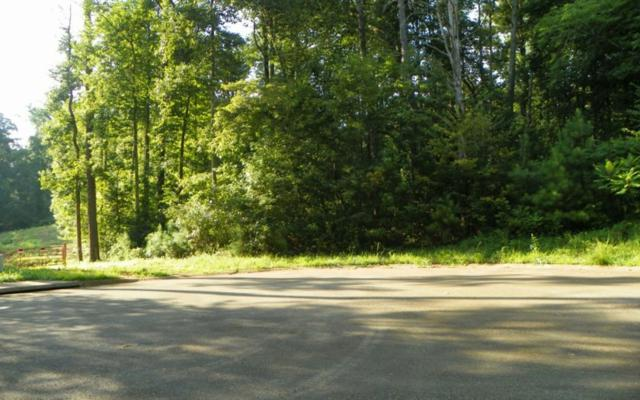 LT 41 Old South Farms, Ellijay, GA 30540 (MLS #279680) :: RE/MAX Town & Country