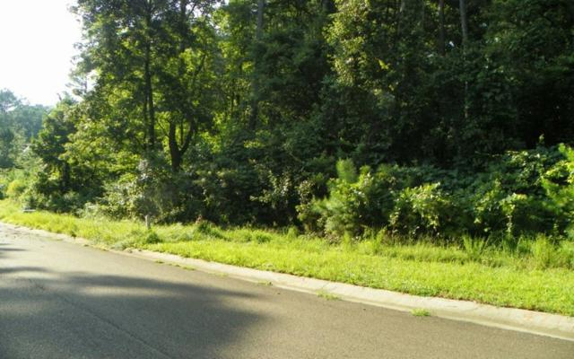 LT 47 Old South Farms, Ellijay, GA 30540 (MLS #279684) :: RE/MAX Town & Country