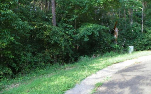 LT 48 Old South Farms, Ellijay, GA 30540 (MLS #279693) :: RE/MAX Town & Country