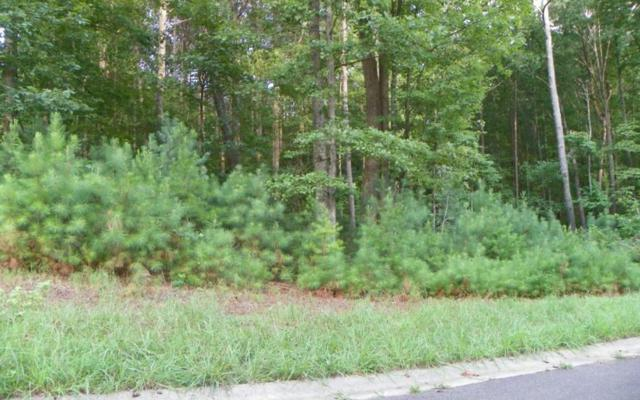LT 52 Old South Farms, Ellijay, GA 30540 (MLS #279698) :: RE/MAX Town & Country