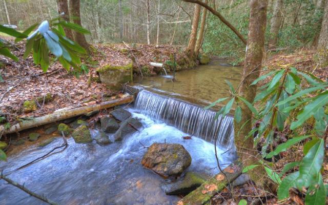 LOT12 Buck Creek Trail, Blue Ridge, GA 30513 (MLS #279730) :: Path & Post Real Estate