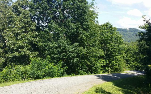 Mountain Harbour M23, Hayesville, NC 28904 (MLS #279748) :: RE/MAX Town & Country