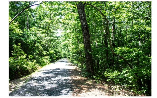 00 Ludlum Drive, Hayesville, NC 28904 (MLS #279836) :: RE/MAX Town & Country