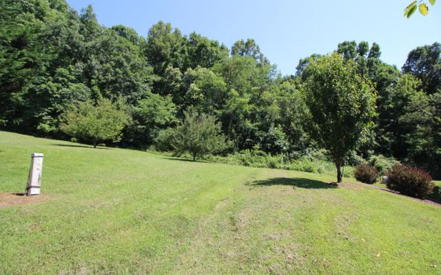 LOT 9 Murray Hill Rd., Hayesville, NC 28904 (MLS #279873) :: RE/MAX Town & Country