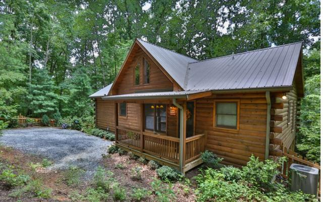 1102 Maggie Chapman, Cherry Log, GA 30540 (MLS #279879) :: RE/MAX Town & Country