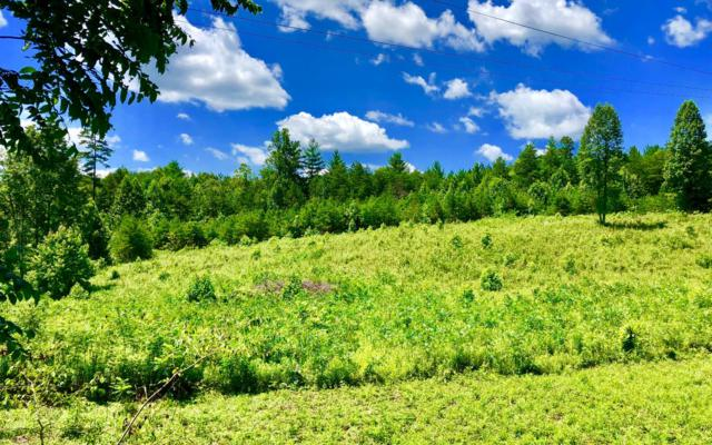 000 Farner Road, Turtletwon, TN 37391 (MLS #279915) :: RE/MAX Town & Country