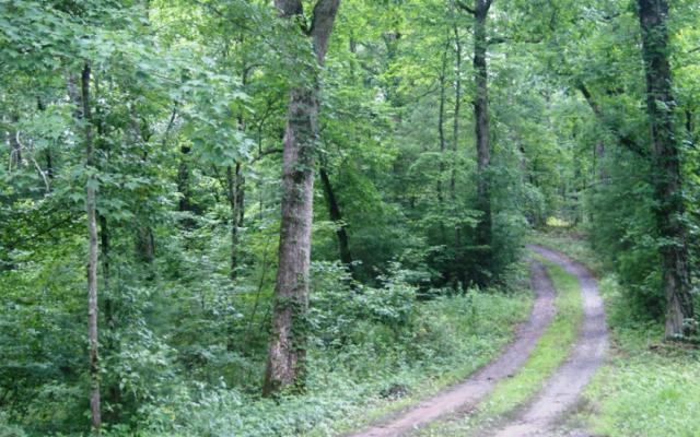 LT 6A Deer Haven Dr, Morganton, GA 30560 (MLS #279940) :: RE/MAX Town & Country