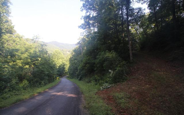 733 Deer Lane, Hiawassee, GA 30546 (MLS #279948) :: RE/MAX Town & Country