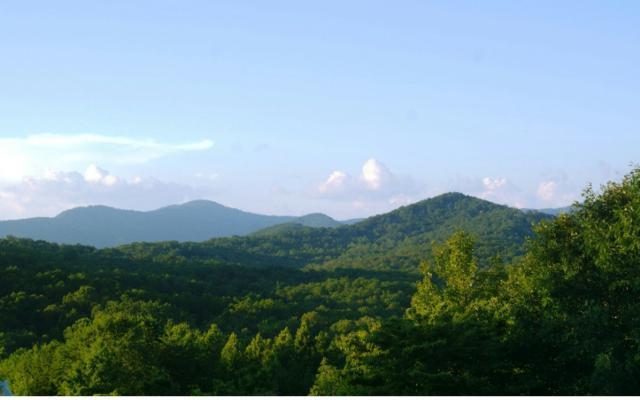 14A&B Twin Peaks Dr, Blue Ridge, GA 30513 (MLS #279980) :: RE/MAX Town & Country