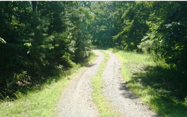 LOT10 Wunder Bear Ridge, Morganton, GA 30560 (MLS #279999) :: Path & Post Real Estate