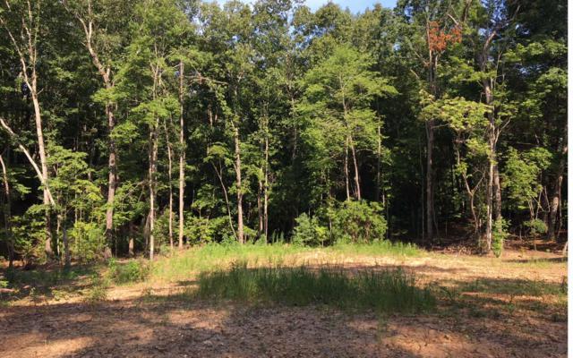 LT 2 High Pine Subd, Morganton, GA 30560 (MLS #280005) :: RE/MAX Town & Country