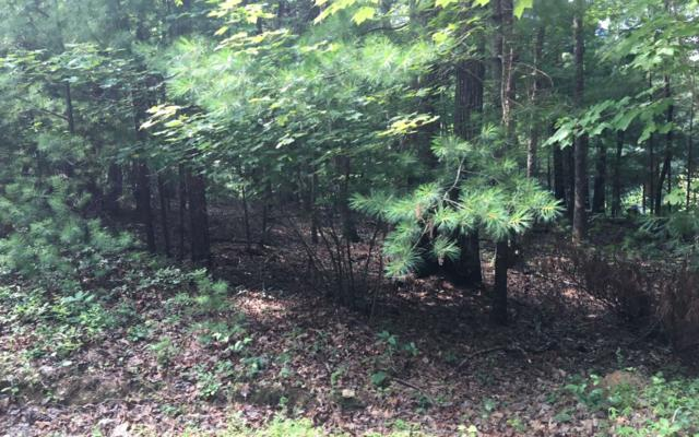 LT 9 High Pine Subd, Morganton, GA 30560 (MLS #280012) :: RE/MAX Town & Country