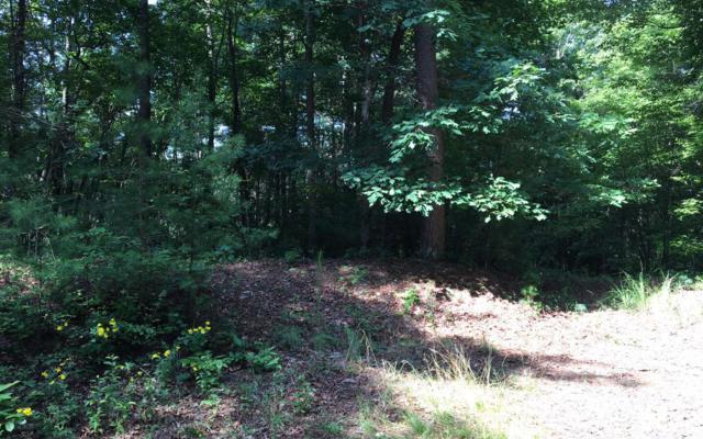 LT 15 High Pine Subd, Morganton, GA 30560 (MLS #280019) :: RE/MAX Town & Country