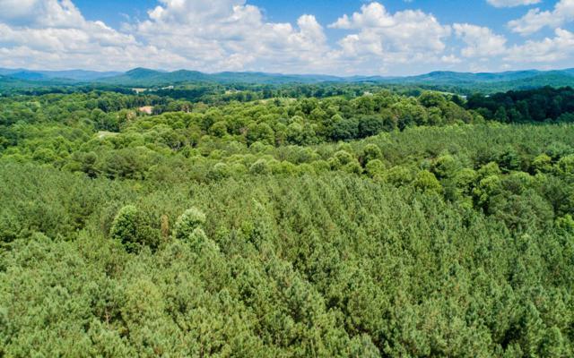 LT23 Foxpaw Leaf Ln, Ellijay, GA 30536 (MLS #280021) :: RE/MAX Town & Country