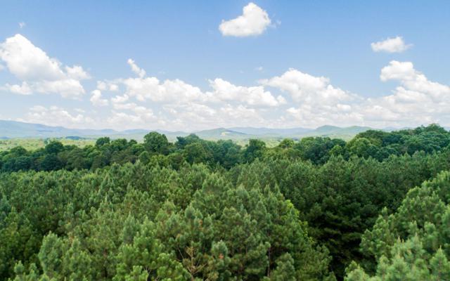 LT34 Foxpaw Leaf Ln, Ellijay, GA 30536 (MLS #280024) :: RE/MAX Town & Country
