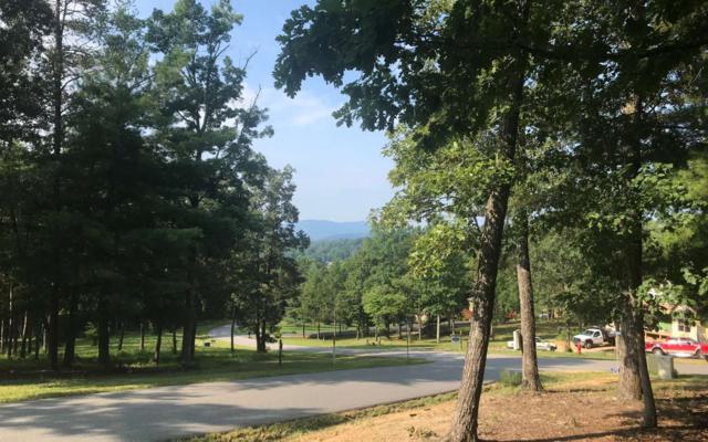 LT 27 Tallulah Landing, Blairsville, GA 30512 (MLS #280047) :: RE/MAX Town & Country