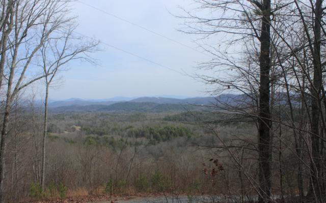 LT 5 Arrowhead Drive, Mineral Bluff, GA 30559 (MLS #280073) :: RE/MAX Town & Country