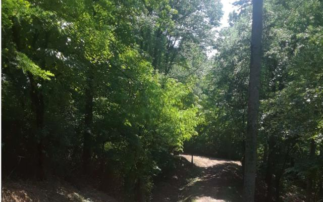 3.7AC West Highland St, Blue Ridge, GA 30513 (MLS #280085) :: RE/MAX Town & Country