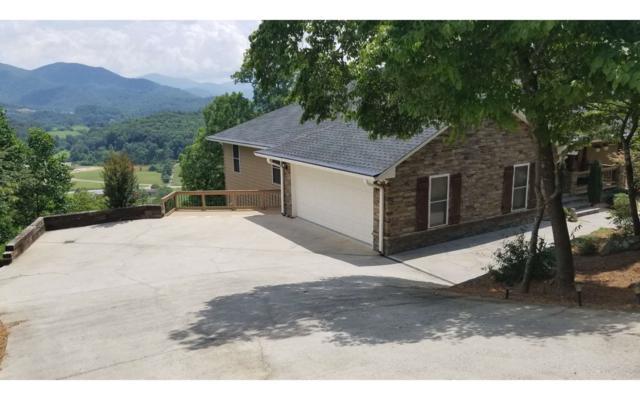 1720 Victoria Woods Cir, Hiawassee, GA 30546 (MLS #280097) :: RE/MAX Town & Country
