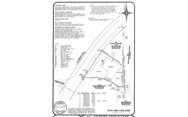 201 Blue Ridge Street, Blairsville, GA 30512 (MLS #280098) :: RE/MAX Town & Country