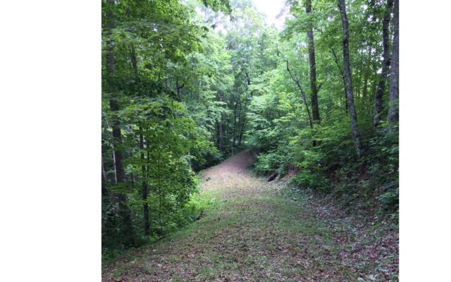 LOT 1 Laurel Ridge, Hiawassee, GA 30546 (MLS #280105) :: Path & Post Real Estate