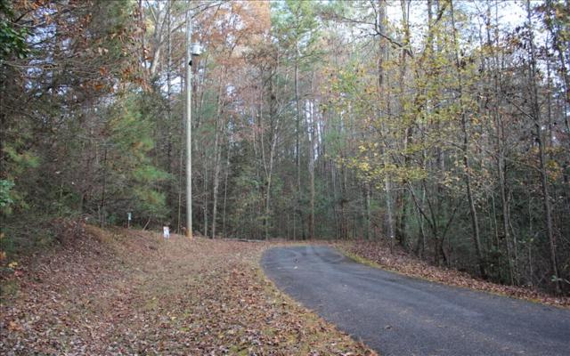 LT 14 Maple Rest Lane, Ellijay, GA 30536 (MLS #280180) :: RE/MAX Town & Country