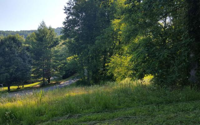 LOT 8 Dogwood Lane, Hayesville, NC 28904 (MLS #280221) :: RE/MAX Town & Country