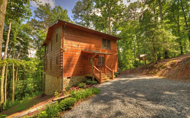 275 N Moreland Drive, Cherry Log, GA 30522 (MLS #280270) :: RE/MAX Town & Country