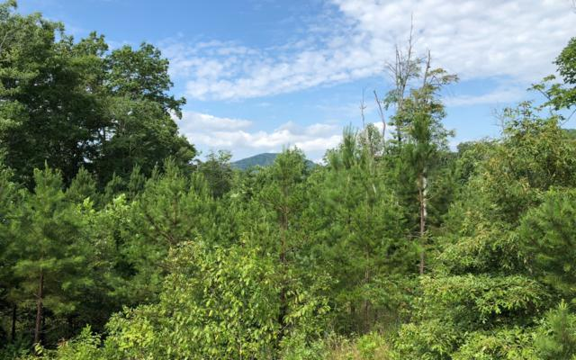 LOT 6 Scout Trace, Blairsville, GA 30512 (MLS #280281) :: RE/MAX Town & Country