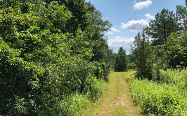 LOT 4 Walnut Springs, Mineral Bluff, GA 30559 (MLS #280285) :: RE/MAX Town & Country