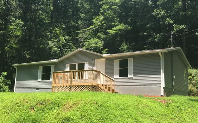 11 Pebble Court, Ellijay, GA 30540 (MLS #280309) :: RE/MAX Town & Country