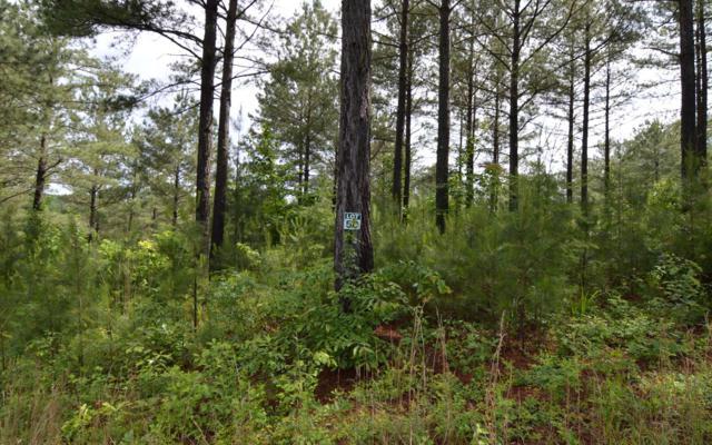 LT 50 Pinehurst, Blairsville, GA 30512 (MLS #280344) :: Path & Post Real Estate