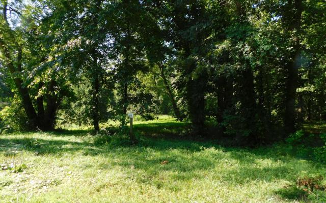 The Arbor Ii Lot 85, Blairsville, GA 30512 (MLS #280504) :: RE/MAX Town & Country