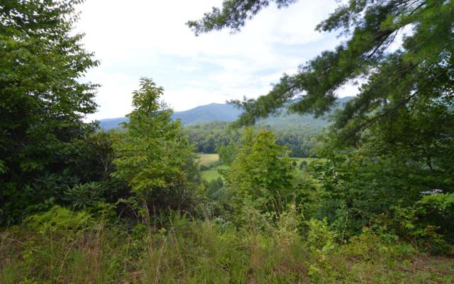 TR E Chairmaker Drive, Hayesville, NC 28904 (MLS #280600) :: RE/MAX Town & Country